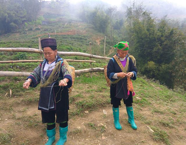 Les femmes Hmong font du fil à partir des tiges de chanvre